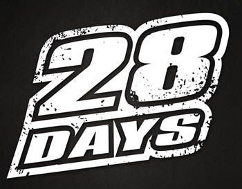 28 days, 28days, Taste of Polonia Festival, Labor Day festival, live music festivals in Chicago, live bands in Chicago