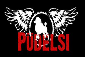 Polish band Pudelsi in Chicago
