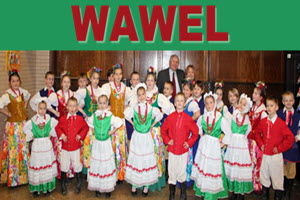 Wawel at Taste of Polonia Festival Chicago
