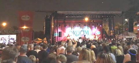 Sponsorship Taste of Polonia Festival, World Music Stage