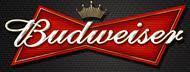 Budweiser, Taste of Polonia Festival, sponsor